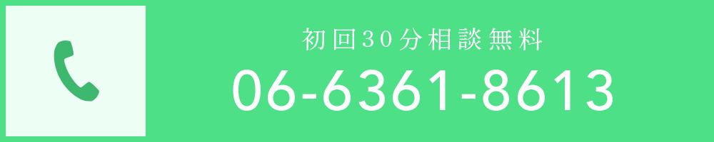 0663618613